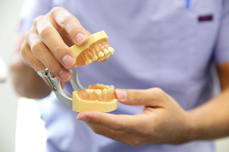 プラークコントロールと生活習慣の改善で歯周病を予防する