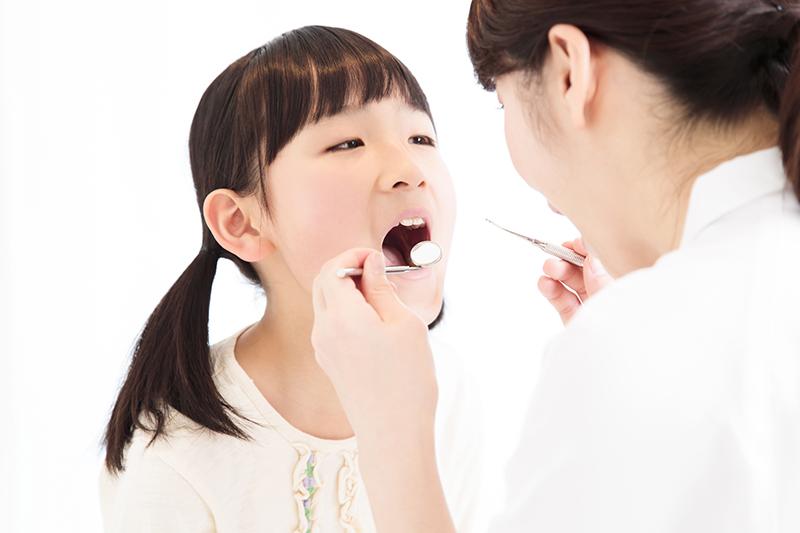 第二期矯正治療(12歳頃〜成人)